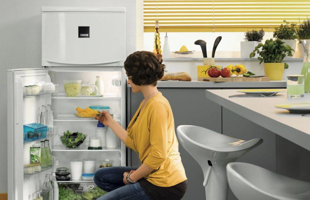 Descongelar o frigorífico Zanussi
