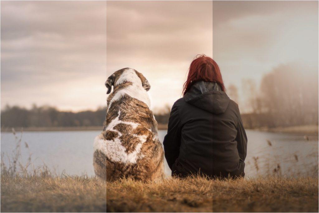 Saiba como usar o modo HDR para melhorar as suas fotos