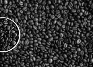19 tipos de variações de café